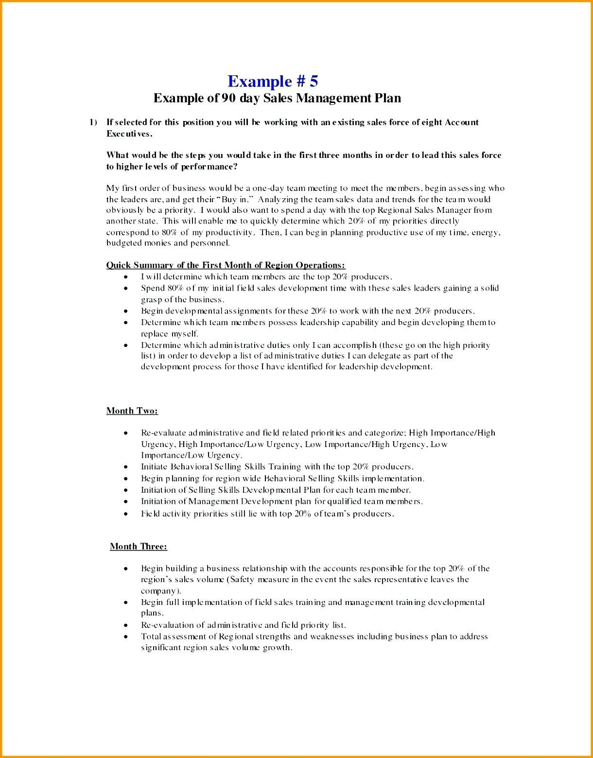 Astounding    Day Plan Template Sales Manager Templates Sample Pertaining To Business Plan For Sales Manager Template