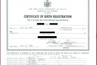 Birth Certificate Maker – Adaptpaperco intended for Birth Certificate Fake Template