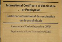 Carte Jaune  Wikipedia with Certificate Of Vaccination Template