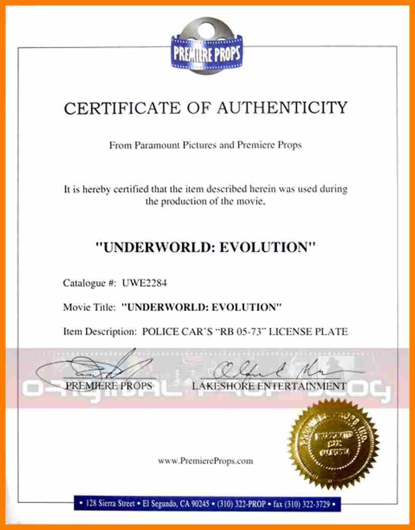 Certificate Of Authorization Template  Weekly Template Pertaining To Certificate Of Authorization Template