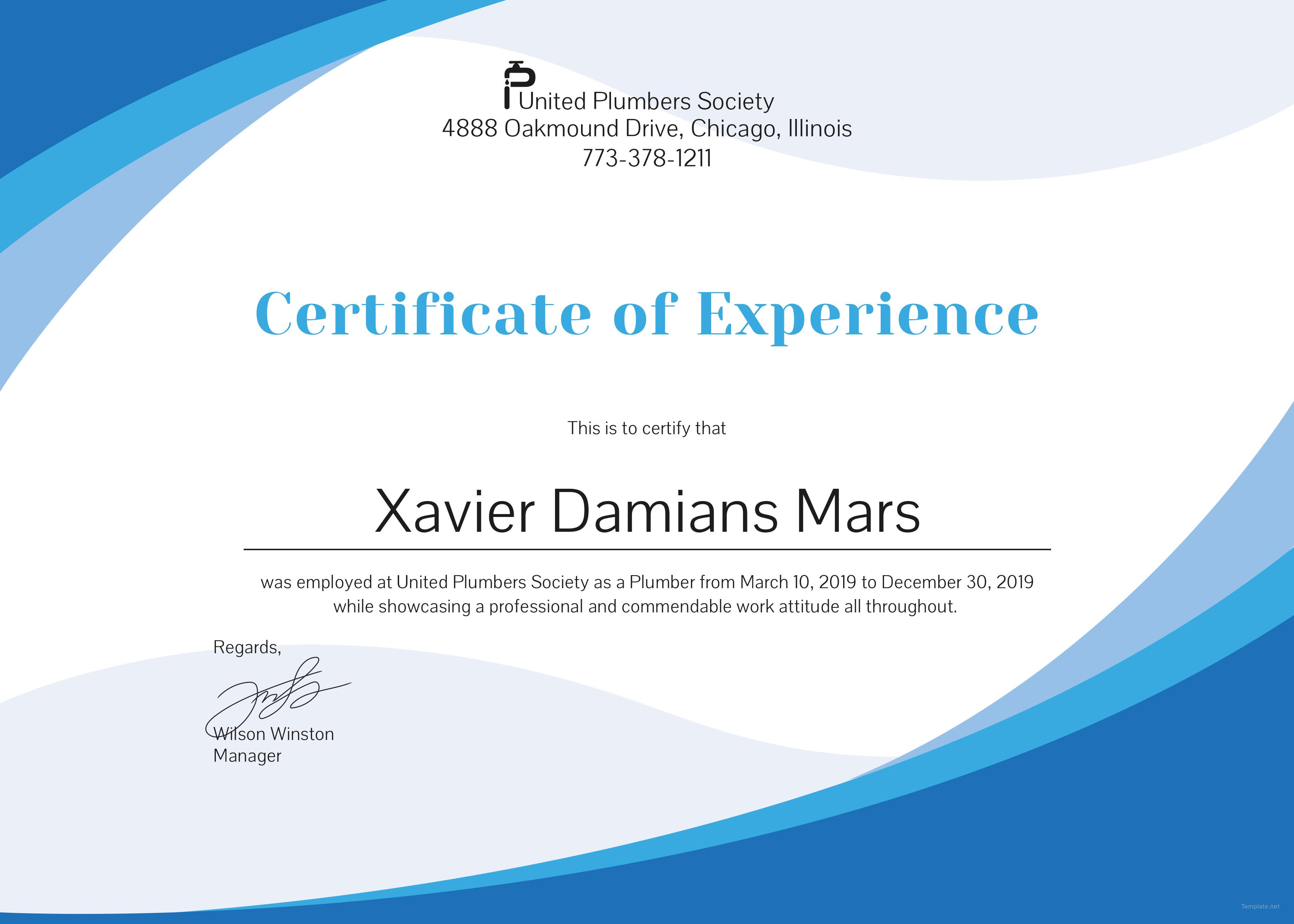 Certificate Of Experience Template  Bizoptimizer In Certificate Of Experience Template