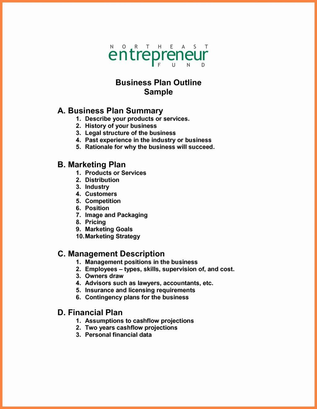 Financial Or Business Plan Template Plans Team  Karaackerman With Regard To Merrill Lynch Business Plan Template