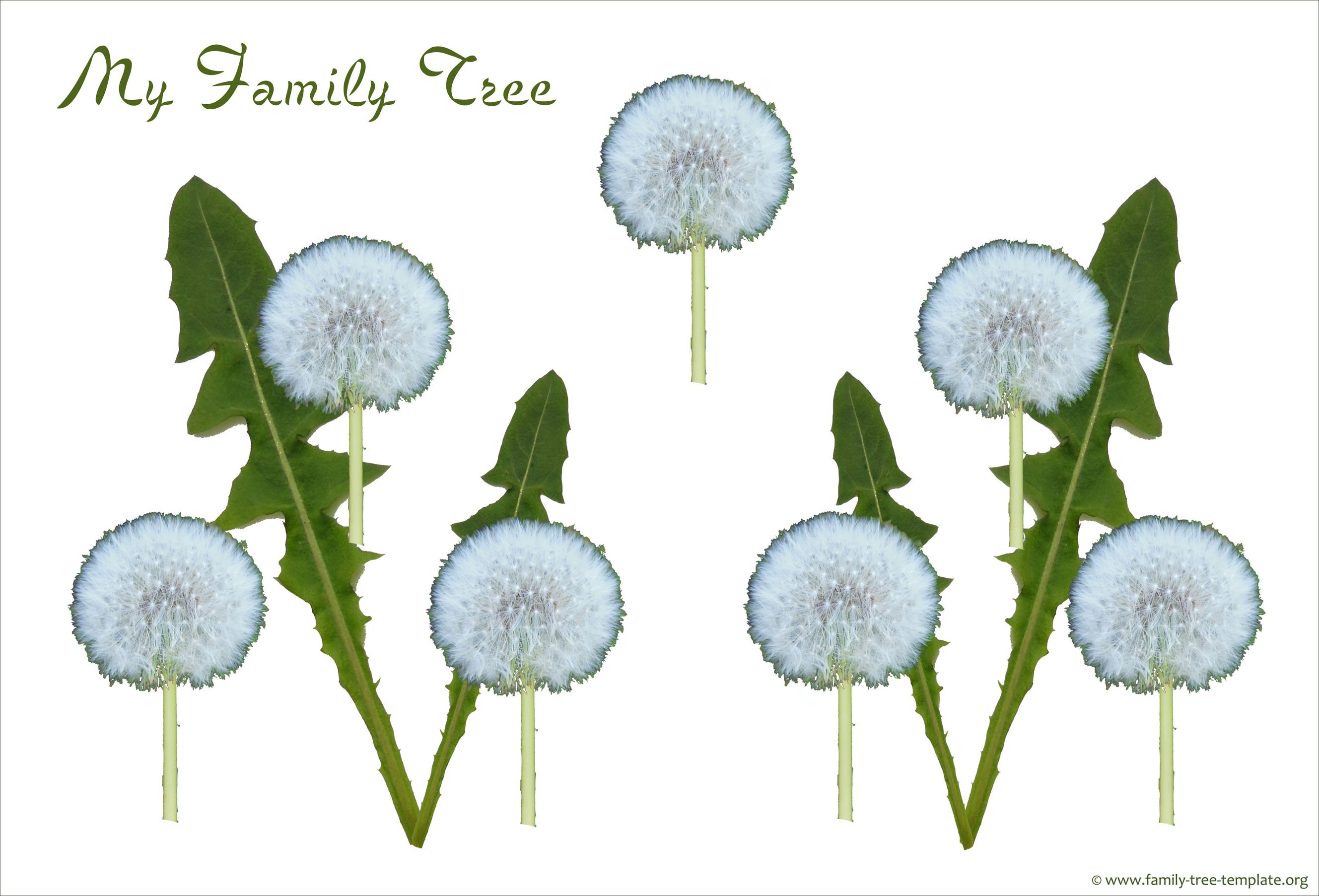 Free Family Tree Template Designs For Making Ancestry Charts Pertaining To Blank Family Tree Template 3 Generations