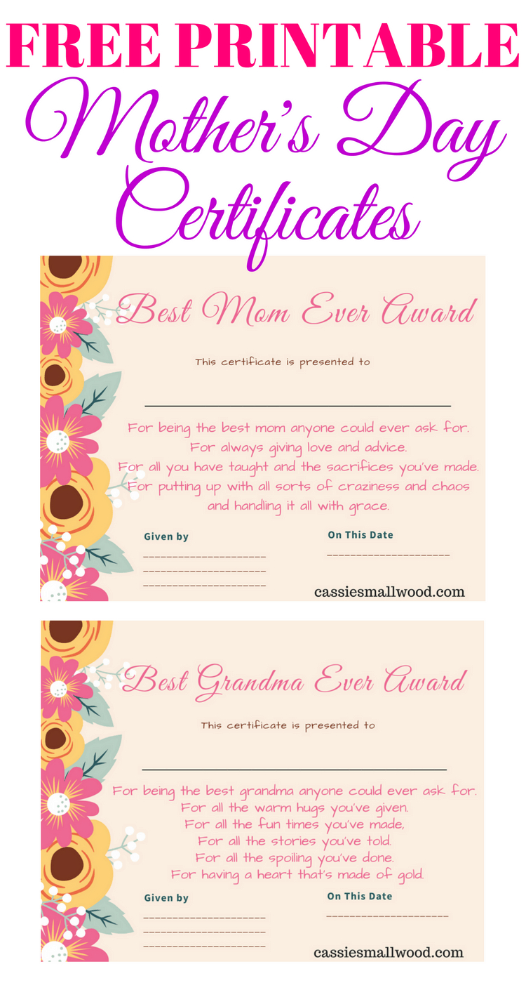 Free Mother's Day Printable Certificate Awards For Mom And Grandma Inside Player Of The Day Certificate Template