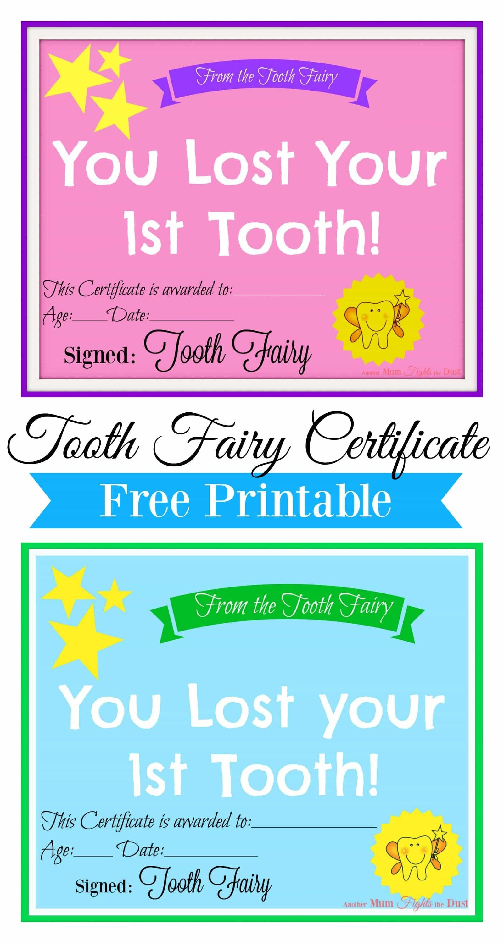 Free Printable Tooth Fairy Certificate  Tooth Fairy Ideas  Tooth With Free Tooth Fairy Certificate Template