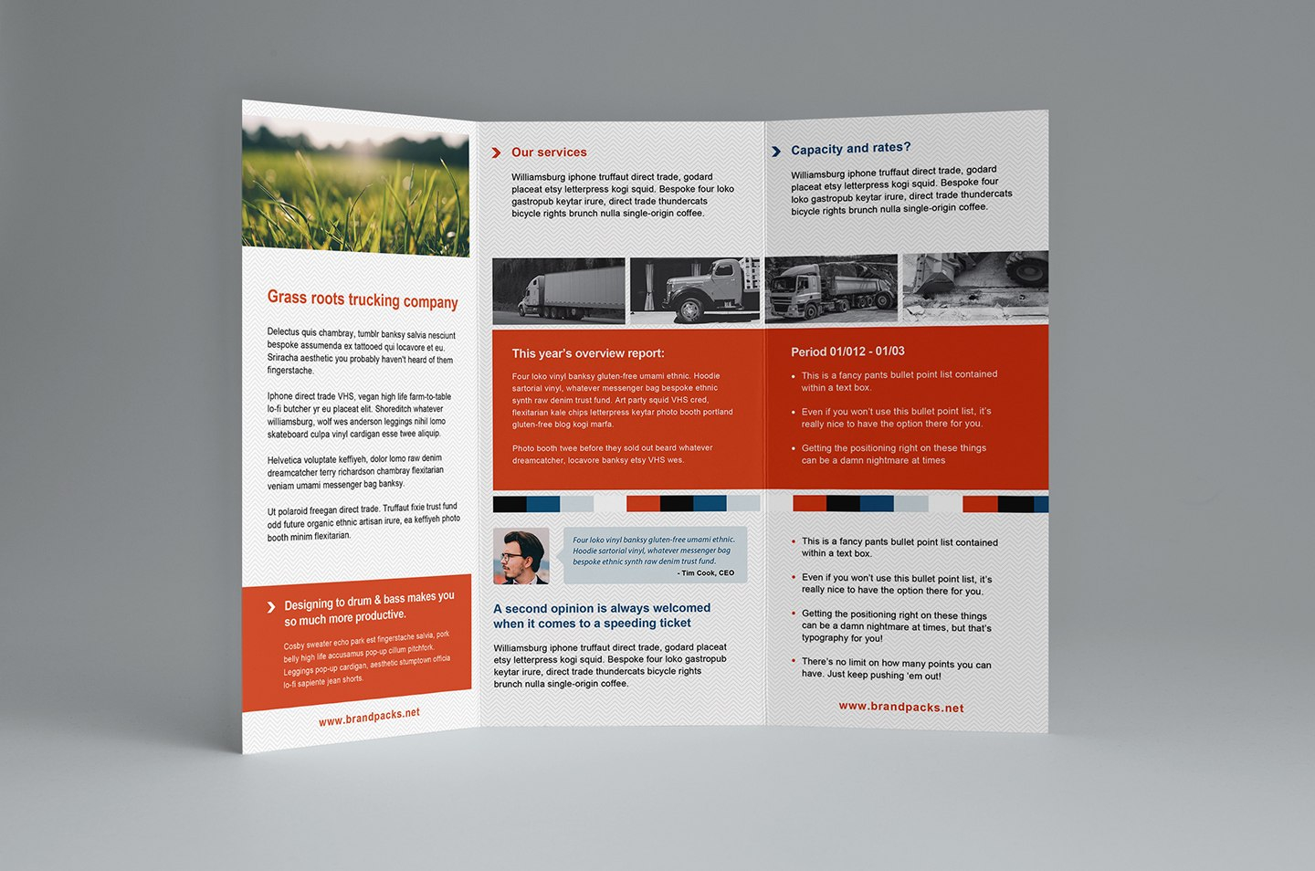 Free Trifold Brochure Template In Psd Ai  Vector  Brandpacks In Free Illustrator Brochure Templates Download