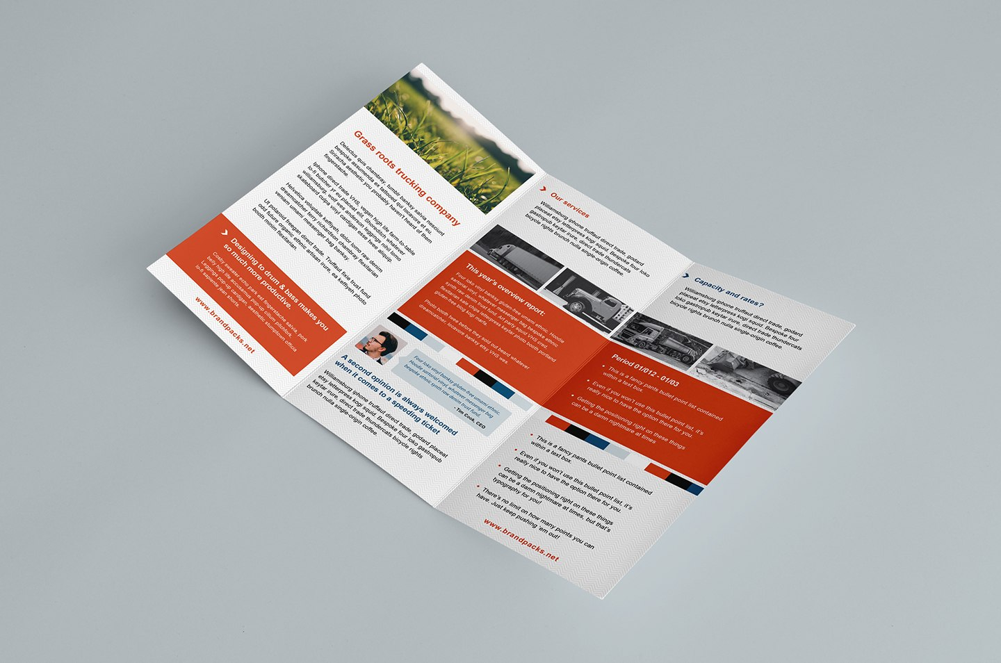 Free Trifold Brochure Template In Psd Ai  Vector  Brandpacks Intended For Tri Fold Brochure Template Illustrator Free