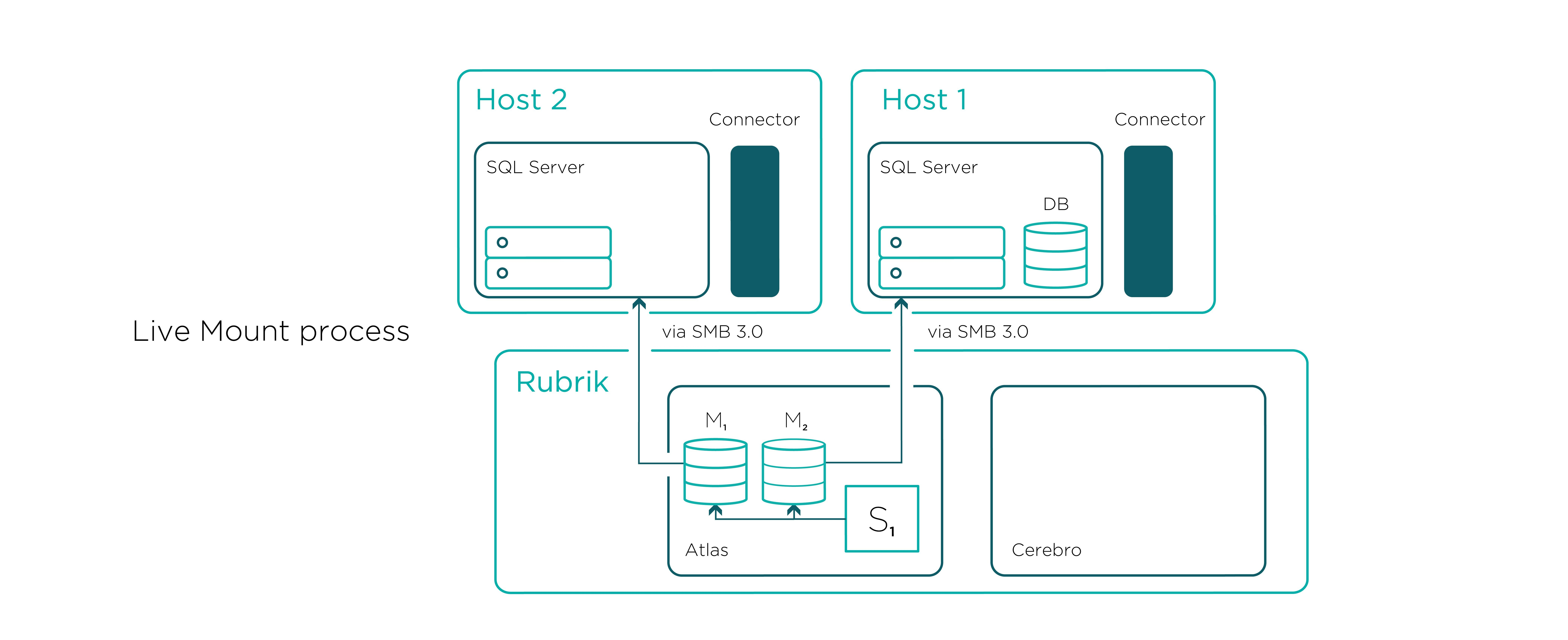 Instant Recovery With Sql Live Mount  Instant Recovery  Rubrik For Sql Server Health Check Report Template