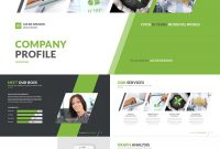 Medical Powerpoint Templates For Amazing Health Presentations with regard to Business Profile Template Ppt