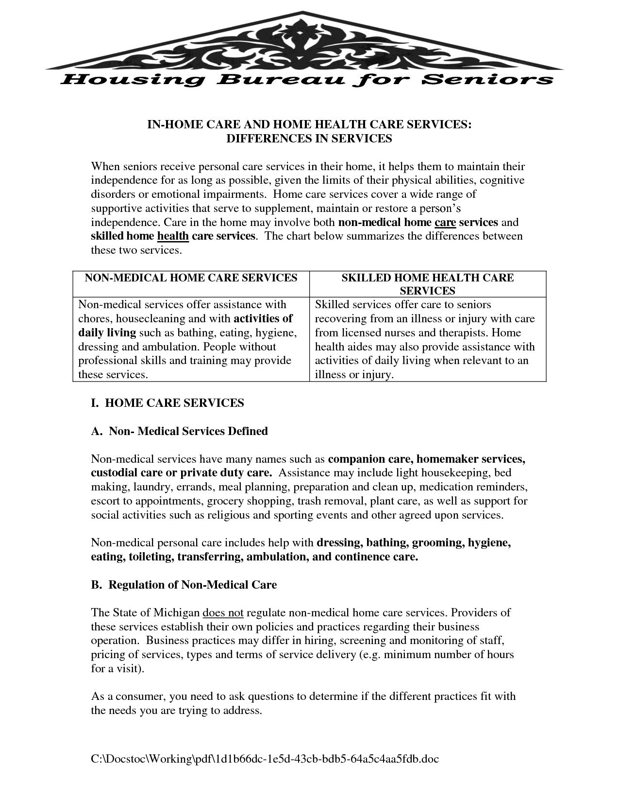 Non Medical Home Care Business Plan Template Sample Fancy Regarding Non Medical Home Care Business Plan Template