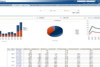 Oracle Airlines Data Model Sample Reports with Sales Analysis Report Template