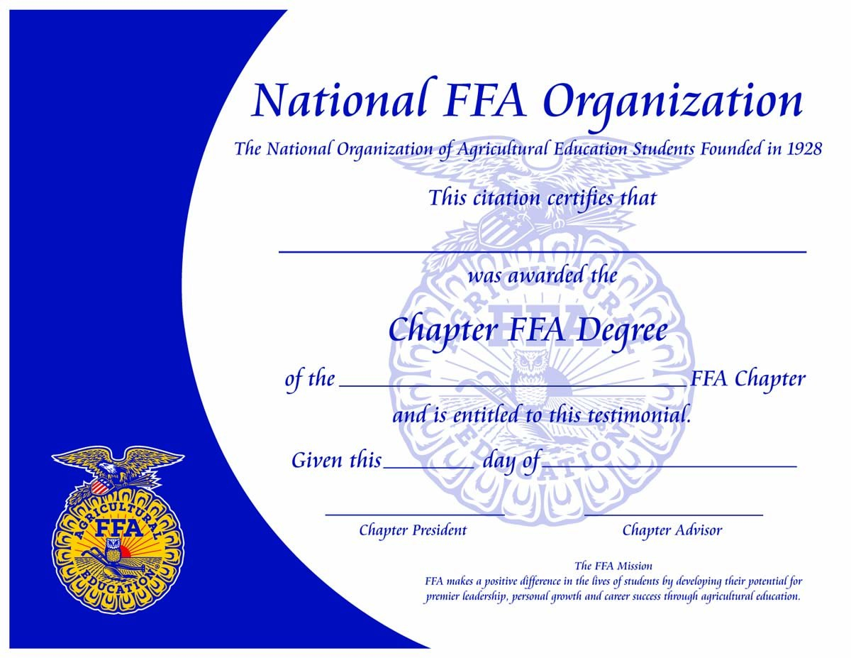 Paper Certificates  Papcert Throughout Leadership Award Certificate Template