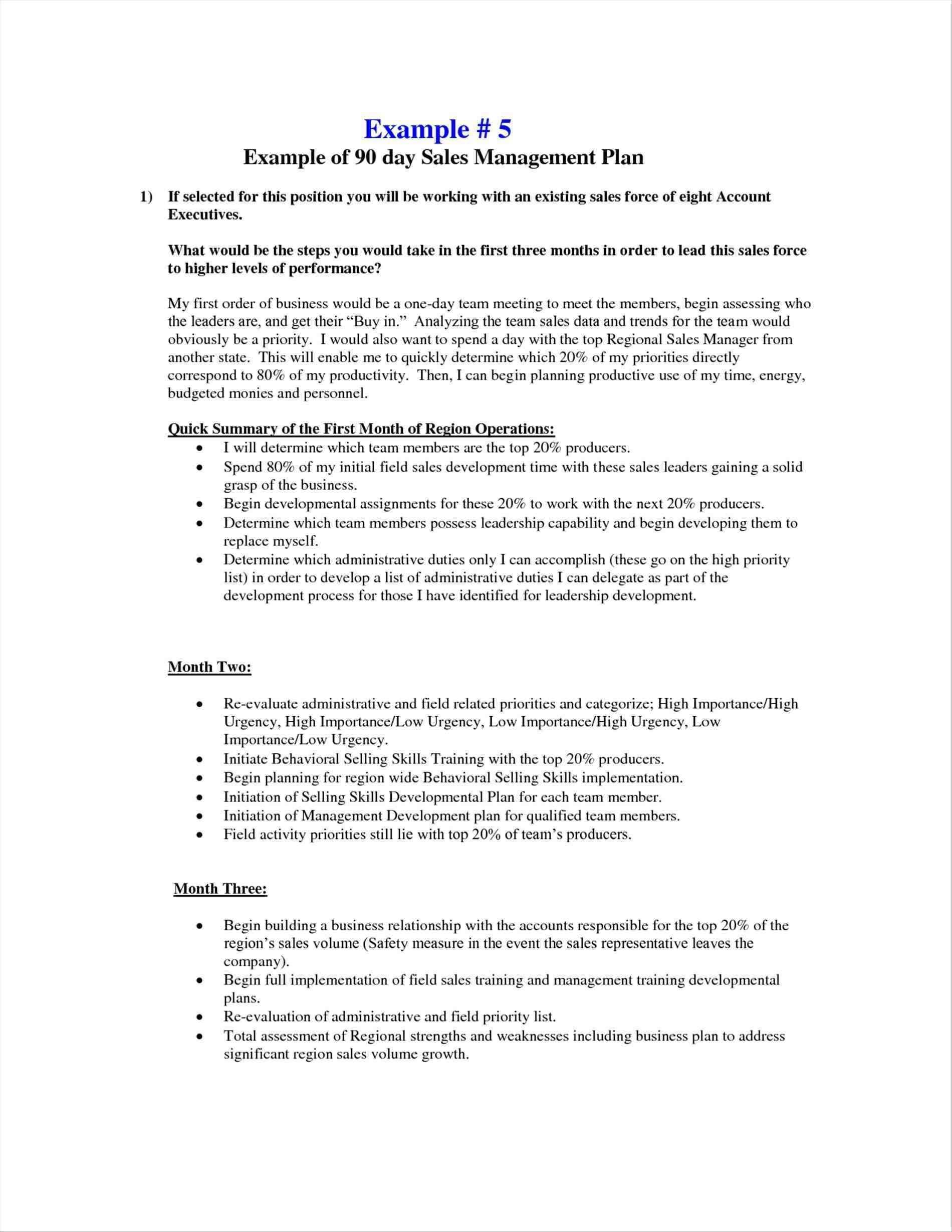 Plans Interview Business Fantastic Plan Template Templates Sales In Interview Business Plan Template