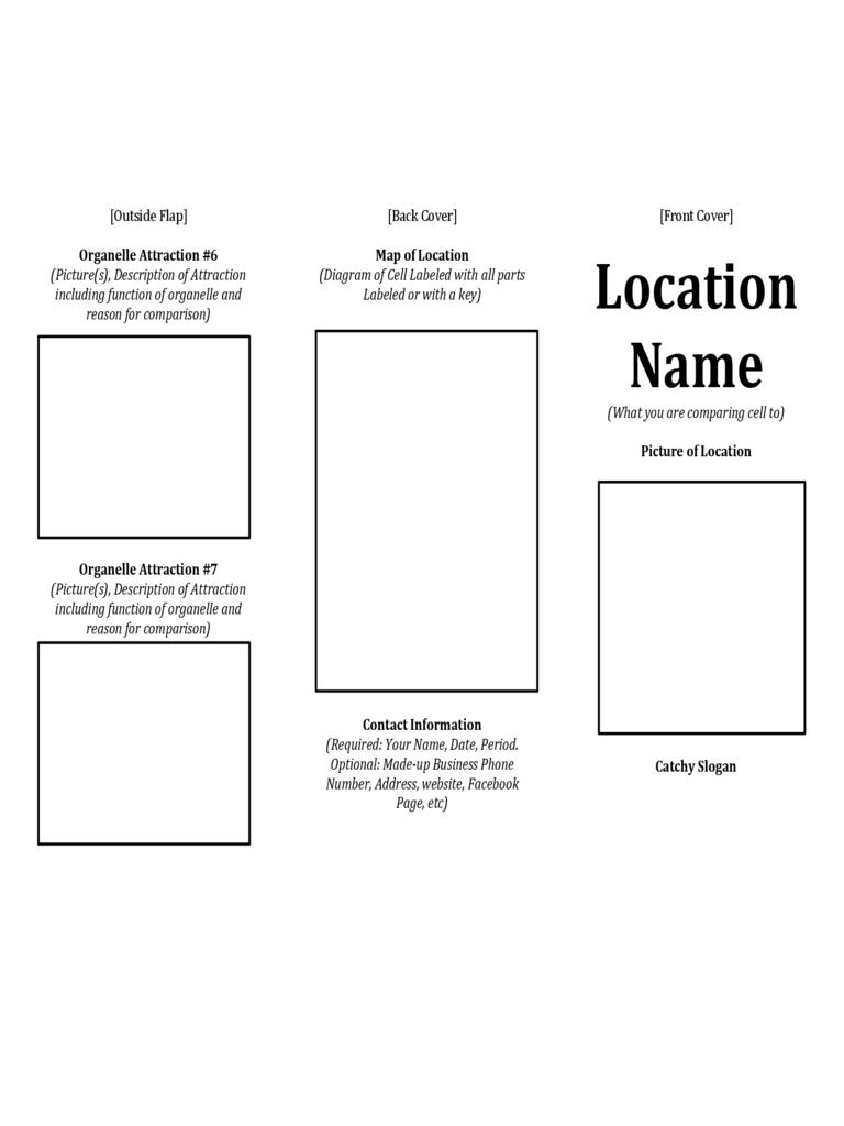 Printable Travel Brochure Template For Kids  Theveliger For Travel Brochure Template For Students