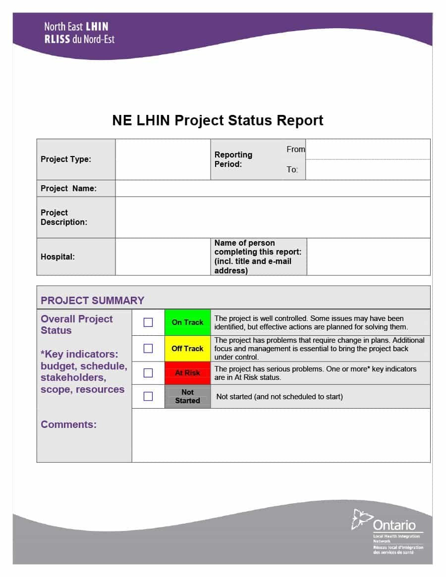 Project Status Report Templates Word Excel Ppt ᐅ Template Lab With Regard To Project Status Report Template In Excel