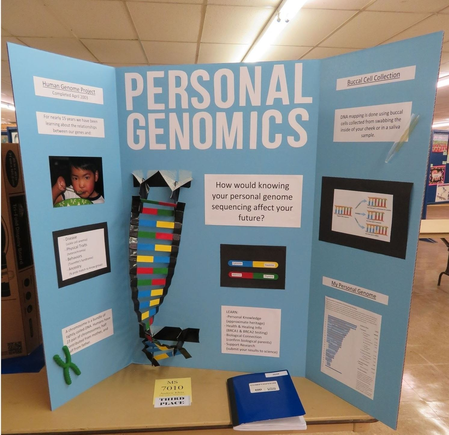 Science Fair Intended For Science Fair Labels Templates