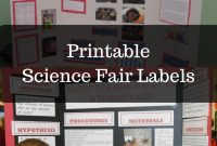 Science Fair Project Labels And Title Template Editable  Upper pertaining to Science Fair Labels Templates
