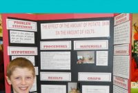 Science Fair Project Labels And Title Template  Upper Elementary throughout Science Fair Labels Templates