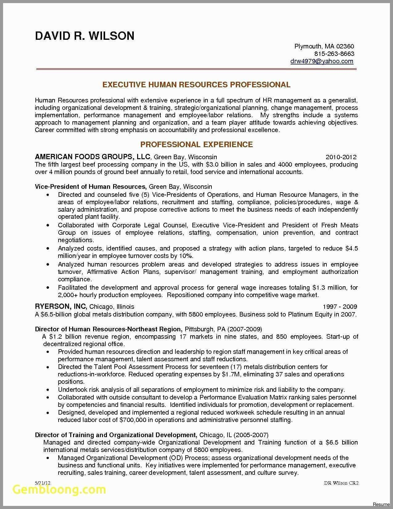 Talent Management Contract Template  Lera Mera For Talent Management Agreement Template