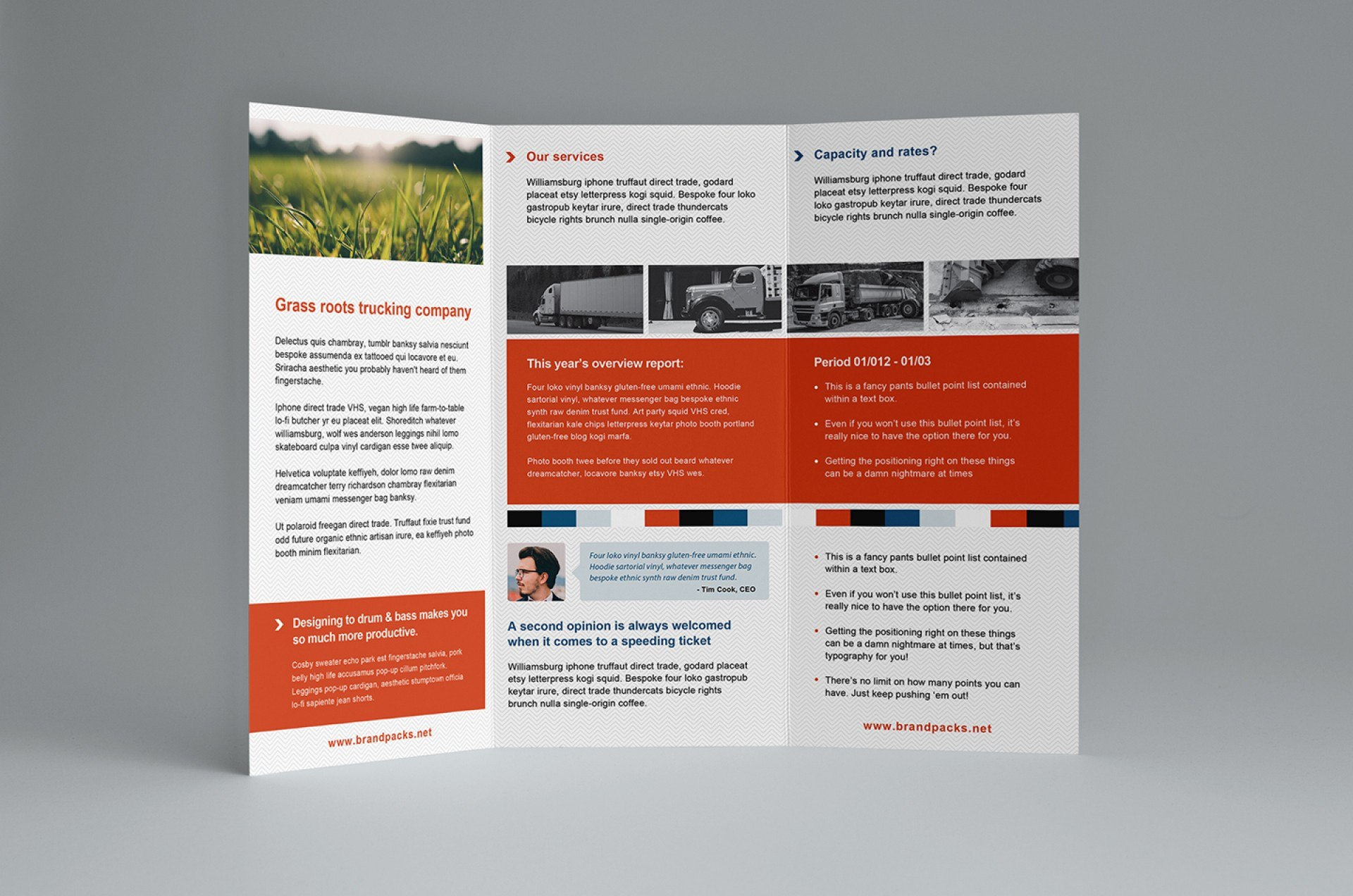 Template Ideas Tri Fold Templates Free Corporate Trifold With Free Tri Fold Business Brochure Templates