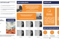 Templates Black Friday Poster And Annual Report For Ngo  Report With Regard To Ngo Brochure Templates