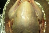 Thanksgiving Turkey Blank Template  Imgflip throughout Blank Turkey Template