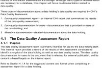 The Cihi Data Quality Framework  Pdf with Data Quality Assessment Report Template