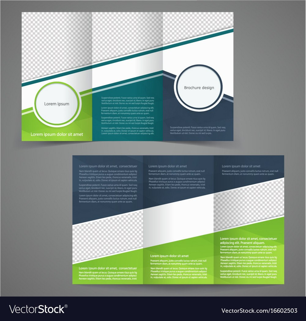 Trifold Business Brochure Template Twosided Vector Image With Regard To One Sided Brochure Template