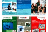 Young Gap Year Global Volunteer A Flyer Needed   Brochure Designs throughout Volunteer Brochure Template