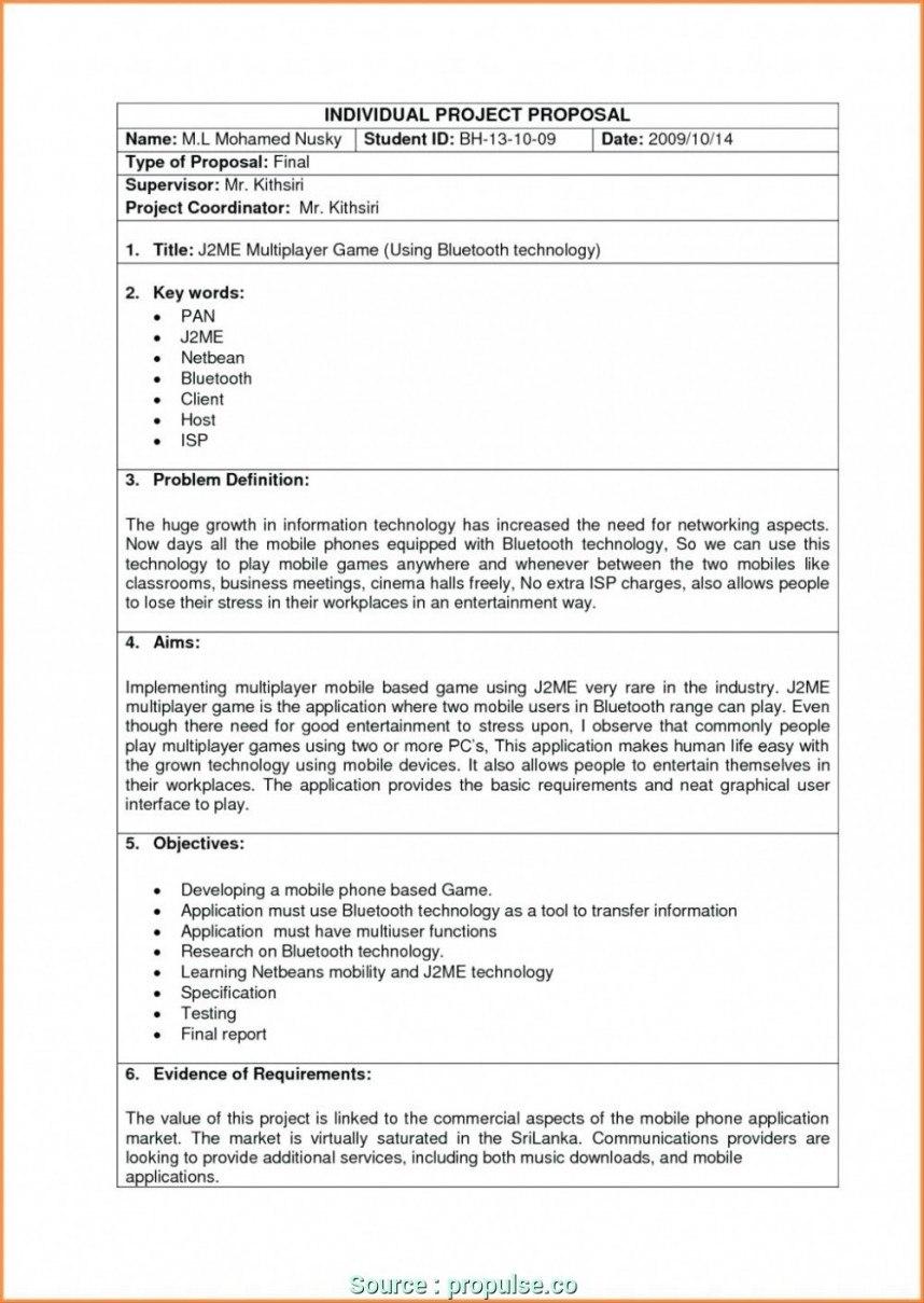 Business Plan Proposal Template Information Technology Sample Regarding Technology Proposal Template