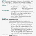 Program Proposal Template  Lera Mera with Advertising Proposal Template