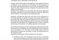 Agreements  Convertible Note Agreement Template Template in Convertible Loan Agreement Template