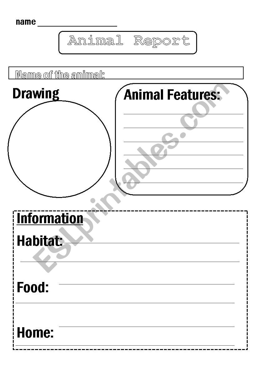 Animal Report Template  Esl Worksheetfloram In Animal Report Template