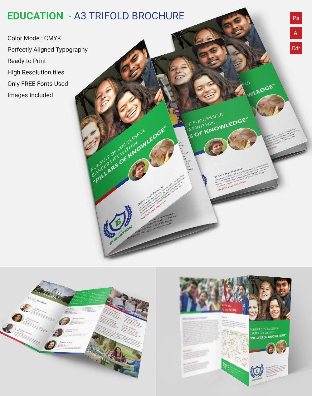 Attractive Education A Tri Fold Brochure Template  Free  Premium For Tri Fold School Brochure Template
