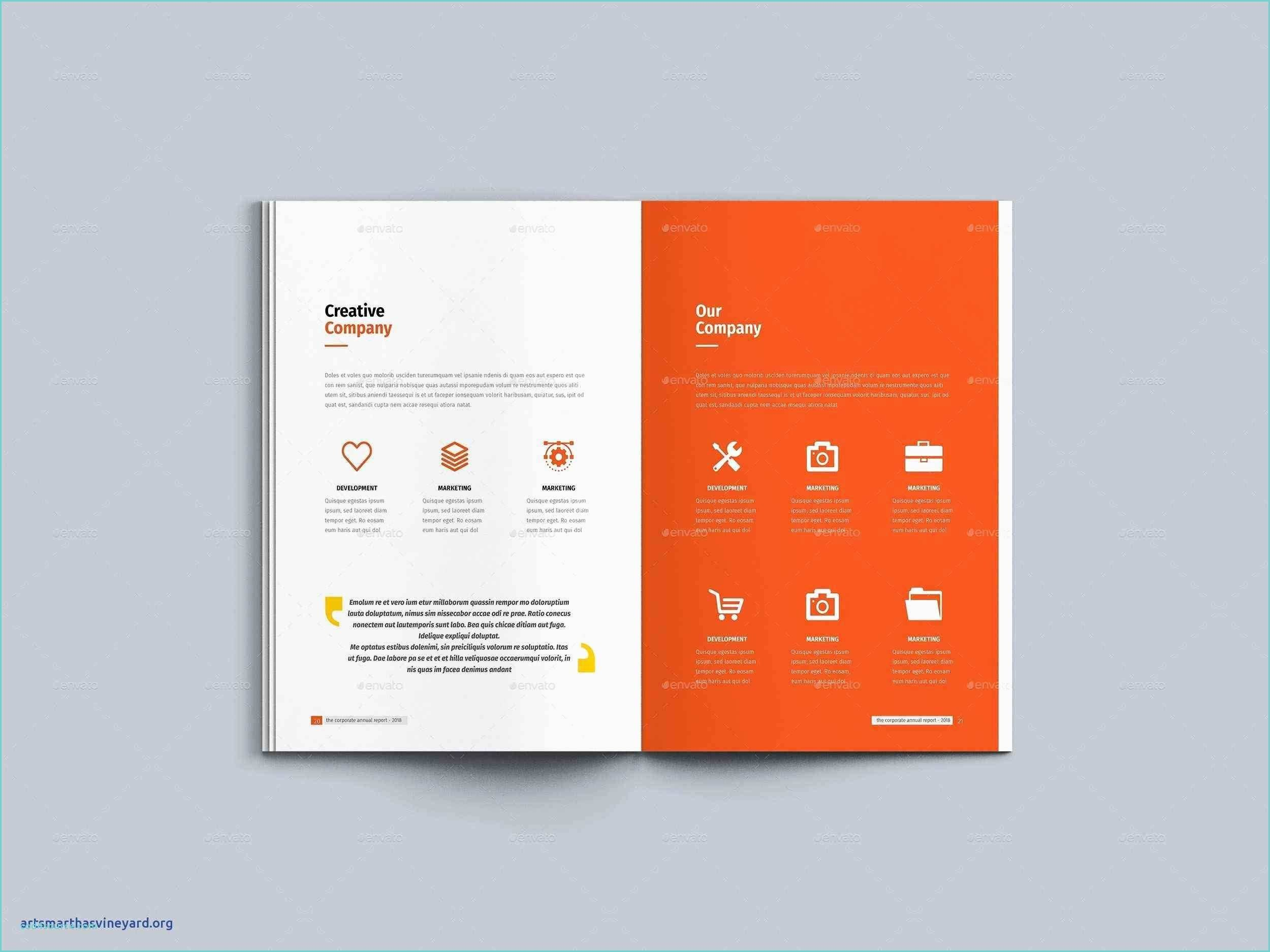 Audited Financial Statements Excel Template Then  Nonprofit Annual Regarding Nonprofit Annual Report Template