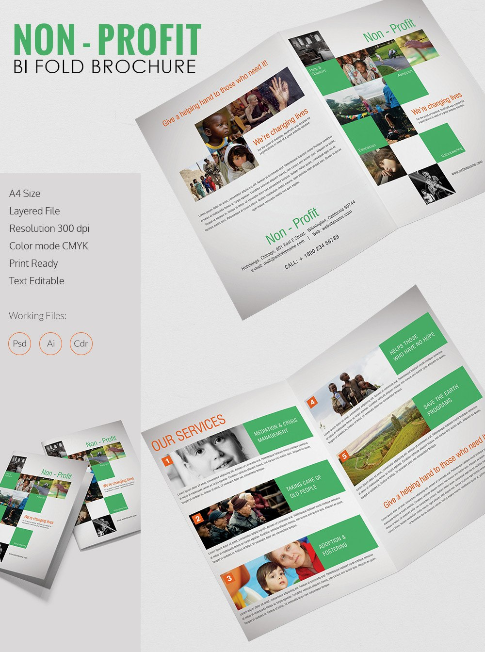 Beautiful Non Profit A Bi Fold Brochure Template  Free  Premium Intended For Ngo Brochure Templates