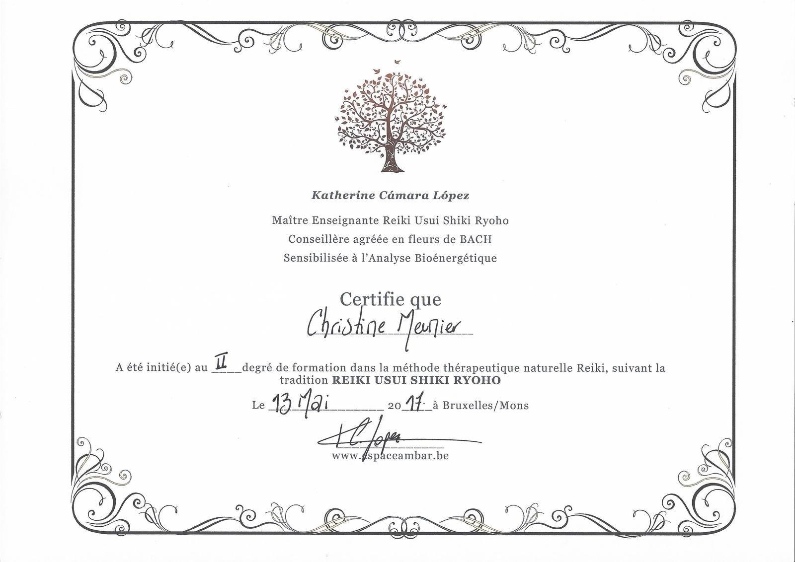 Borderless Certificate Templates  Mandegar Intended For Borderless Certificate Templates