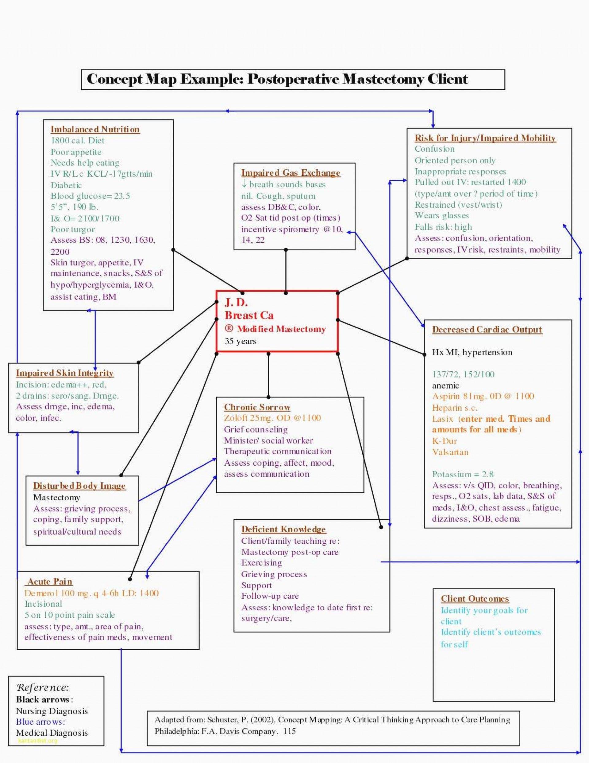 Breathtaking Patient Care Plan Template Templates Nursing Example Regarding Blank Body Map Template