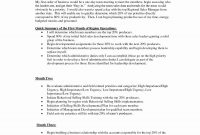 Business Plan Sales Manager Template New Rep Sample Pdf Training within Business Plan For Sales Manager Template