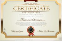 Certificate Template Royalty Free Vector Image for Commemorative Certificate Template