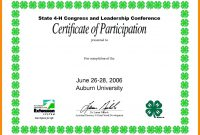 Collection Of Solutions For Conference Participation Certificate in Conference Participation Certificate Template