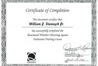 Course Completion Certificate Sample New Free Course Pletion Inside intended for Free Training Completion Certificate Templates