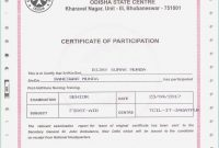 Death Certificate Template Awesome Free Birth Certificate Template intended for Baby Death Certificate Template