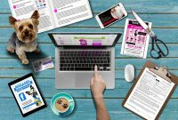 Dog Grooming Templates  The Groomers Profit Kit  The Groomers in Dog Grooming Record Card Template