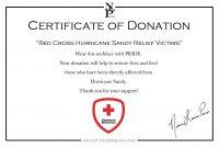 Donation Appreciation Certificate Template intended for Donation Certificate Template