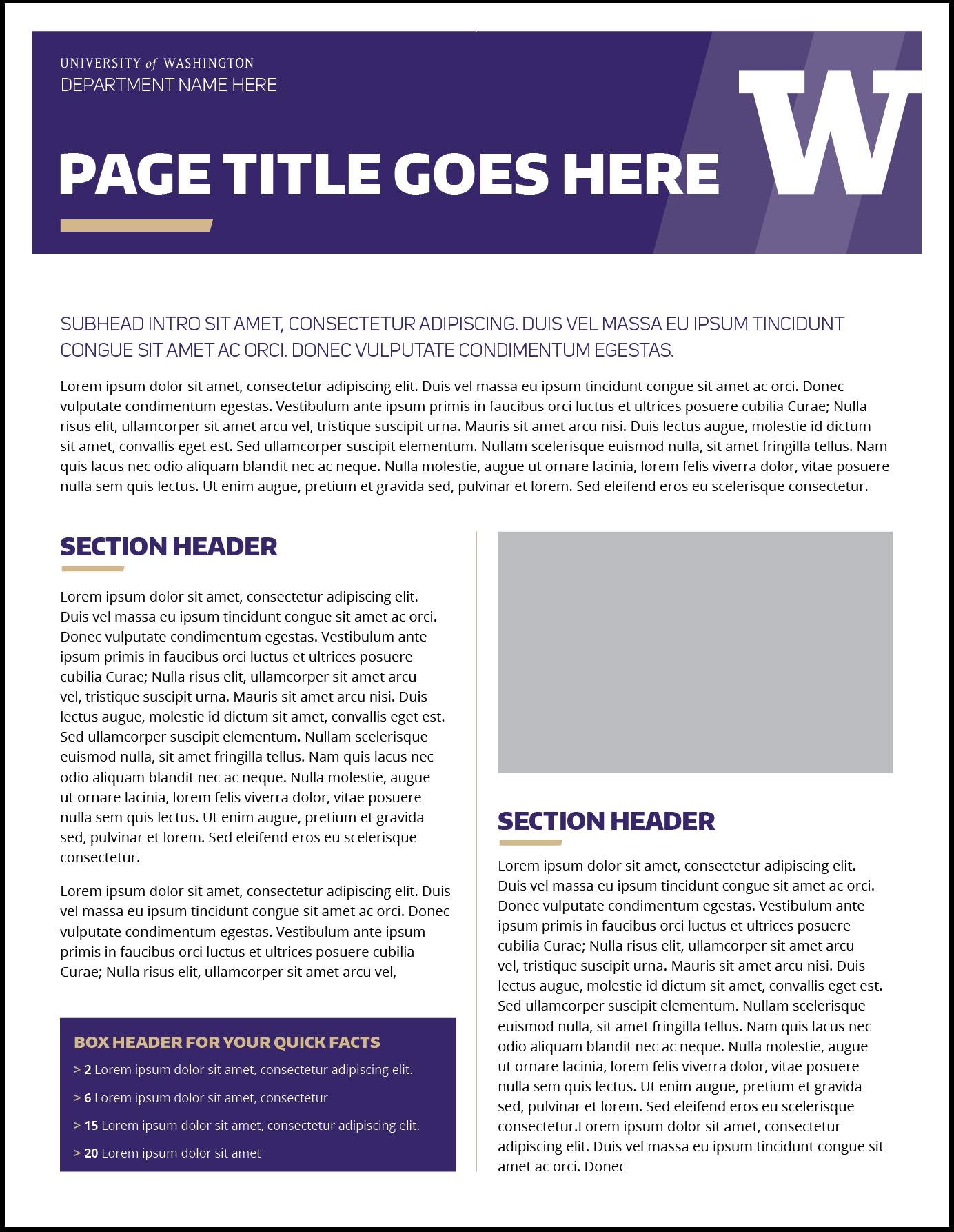 Fact Sheet  Uw Brand In Fact Card Template