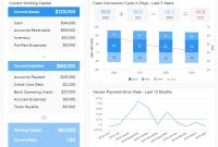 Financial Dashboards  Examples  Templates To Achieve Your Goals in Liquidity Report Template