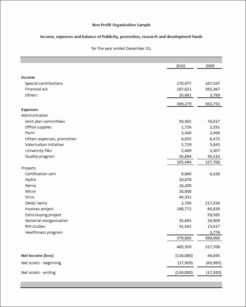 Financial Statement Template For Nonofit Organization Of Audited Inside Non Profit Monthly Financial Report Template