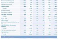 Financialstatementsformatinexcelandmonthlyfinancialreport in Monthly Financial Report Template