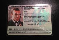 Flawless Fake Id  European Fake Id And Eu Fake Driving Licences pertaining to French Id Card Template